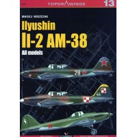 13,Ilyushin Il-2 AM-38